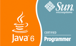 Oracle Sun - Java Certified Programmer 6.0